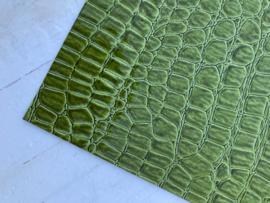 krokodillenprint leer groen 20x22 cm