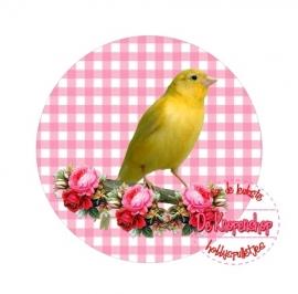 Flatback kanarie op roze ruitje(k868)