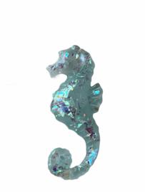 Flatback zeepaardje blue