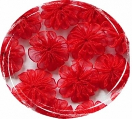 Organza bloem rood 2,5cm pst