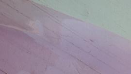 Leer doorzichtig kristal licht roze 10x30 cm