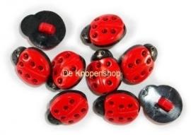 KN395 Rood lieveheersbeestje