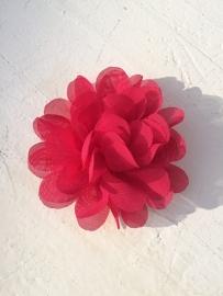 Chiffon bloem fuchsia 7cm