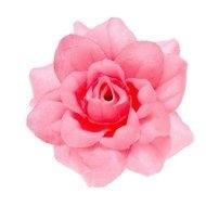 Roos neon roze stof 4,5cm