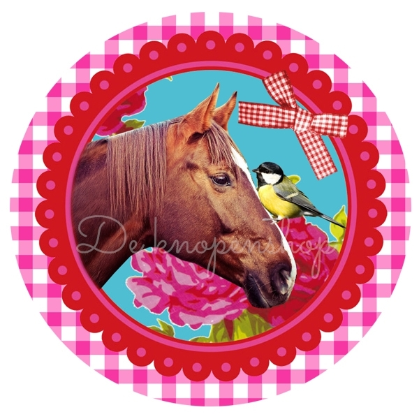 Flatback paard op fuchsia ruitje & vogel