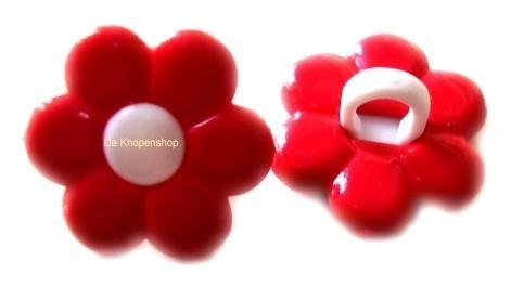 KN552 Rood & witte bloem