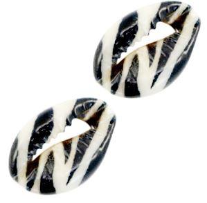 Schelp stukjes Kauri zebra fijn