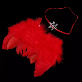 Newborn engelen vleugels rood + haarband