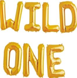 Wild One ballonnen