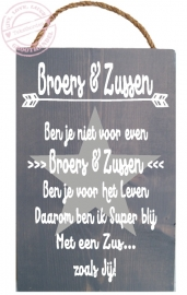 S613 Broers&Zussen Zus