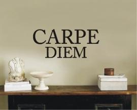 Carpe Diem Modern