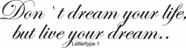 Don`t dream your life, but live your dream..