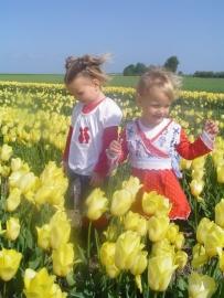 Hollandse Zusjes