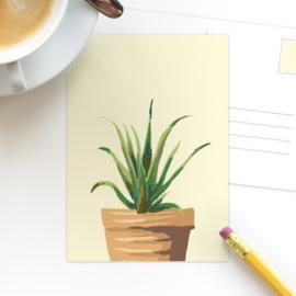 Ansichtkaart Plant varen