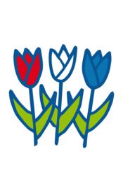 Cadeaulabels 2-set Tulpen