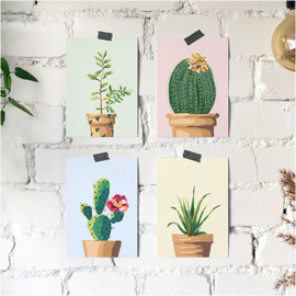 Ansichtkaarten Vetplanten 4-set