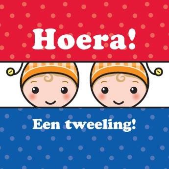 Wenskaart Tweeling NL