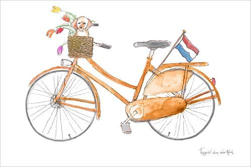 Ansichtkaart Fiets NL