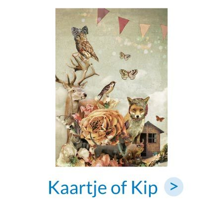 Ansichtkaarten | Kaartje of Kip