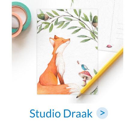Studio Draak