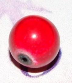 GK031 miracle bead rood 8mm. 6 stuks