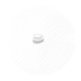 EK033 zoetwaterparel met groeiringen wit 2.1mm. klasse A 10 stuks