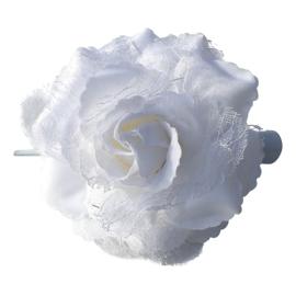 Spaanse (haar) roos, wit met kant
