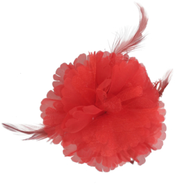 Spaanse haarbloem rood met veren