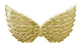 Prinsessen vleugels goud NIEUW