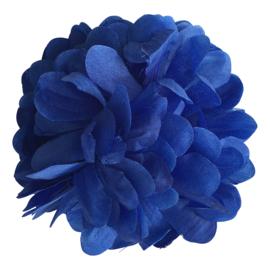 Spaanse haarbloem donker blauw