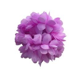 Haarbloem lichter paars