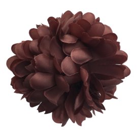 Spaanse haarbloem bruin