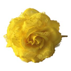 Spaanse (haar) roos, geel met kant