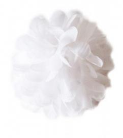 Spaanse haar bloem wit XL