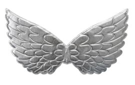 Prinsessen vleugels zilver NIEUW