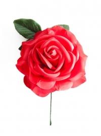 Spaanse flamenco roos, rood