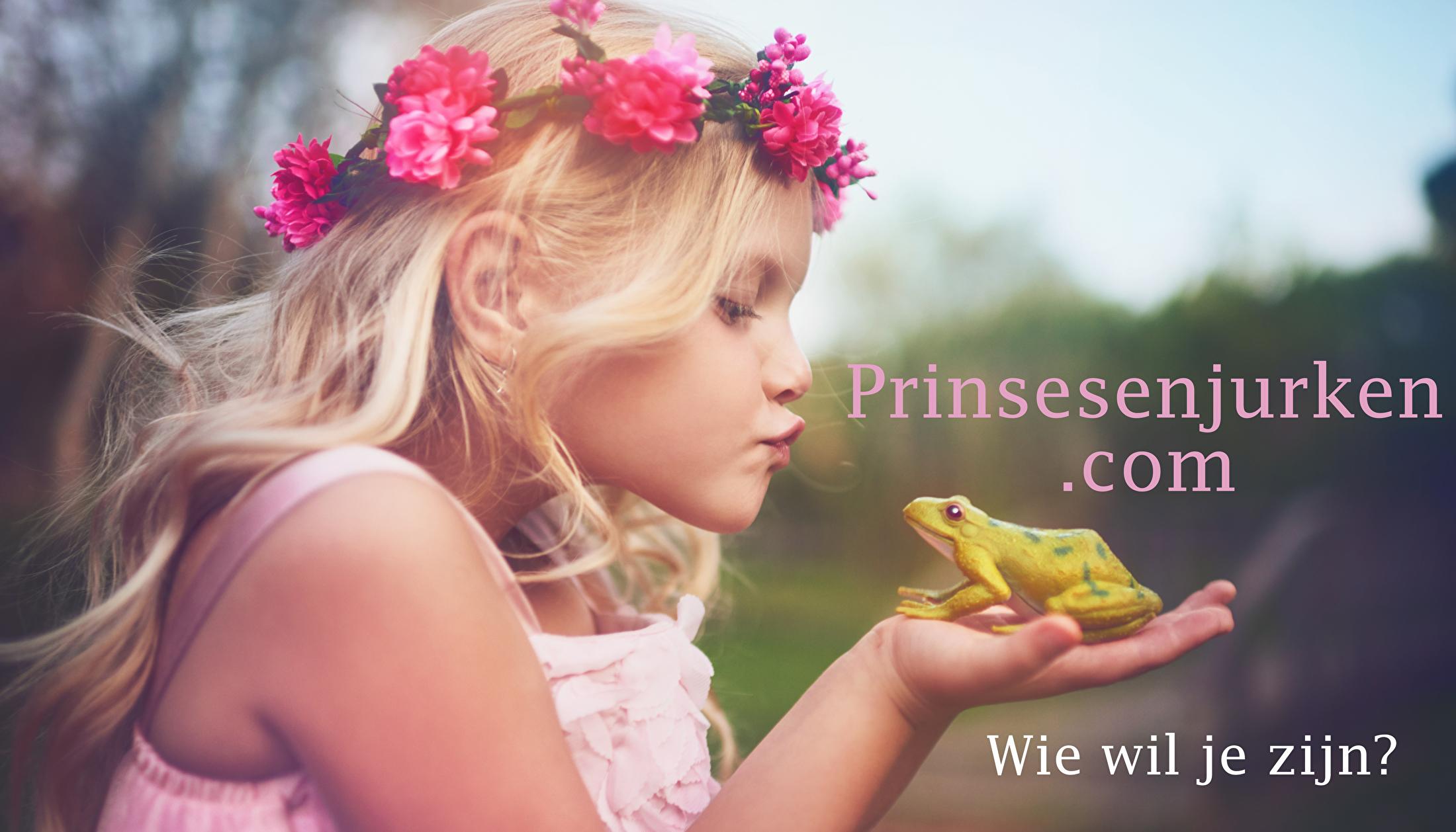 Prinsessenjurken com home header