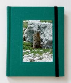 Goldbuch Tourboek Linnen reisdagboek met sluitelastiek groen [1915]