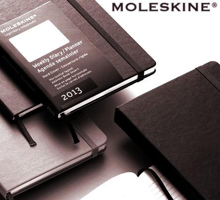 Moleskine 12-maanden agenda 2013