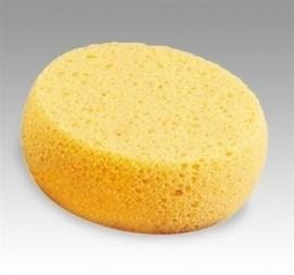 Spons geel/oranje antibacterieel hard DFX SPY