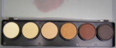 Palet huidtinten 6 x10 gram DFX   FSM6S