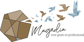 Systemisch Pedagoochelen  Magnolia coaching