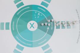Materialen Mindsonar en 6 V's in teamvorming voor Nexus Coaching