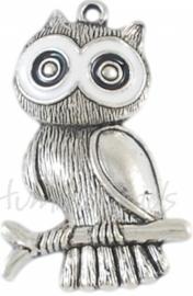 02559 Hanger uil Antiek zilver (Nickel vrij) 55mmx36mmx5mm 1 stuks