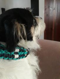 903 Dubbele anti-tekenband voor hond