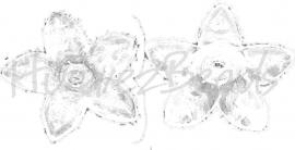 02002 Acryl kralenkap bloem Transparant 17mmx4mm; gat 1,5mm 25 stuks
