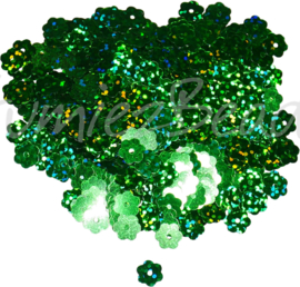 04269 Pailletten Groen 8mmx0,3mm 1 zakje