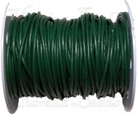 LK-0002 Leerkoord Groen 2,5mm 1 meter