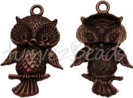 00898 Hanger uil Antiek brons (Nickel vrij) 44mmx28mmx5mm 1 stuks
