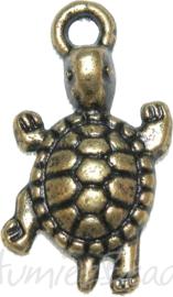 00893 Bedel schildpad Brons 23mmx12mm